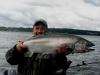 Puget Sound Chinook