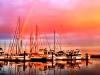 Shilshole Bay marina sunrise